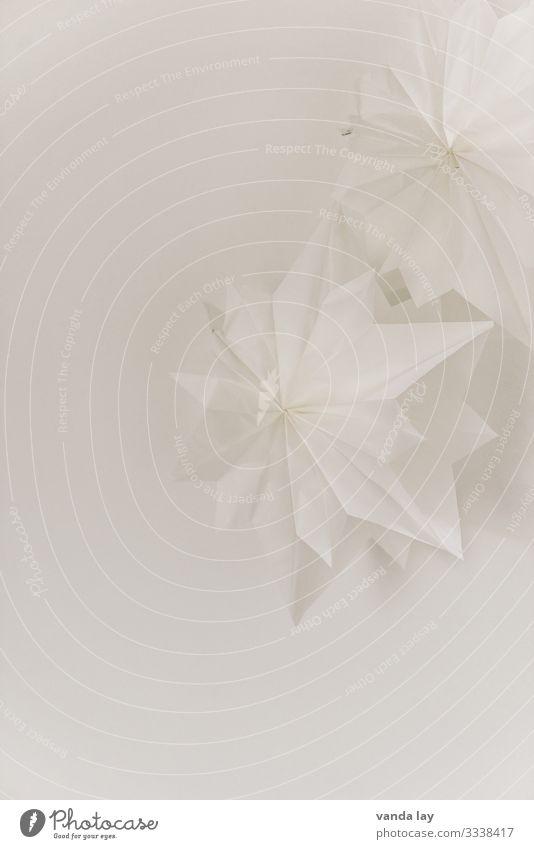Weiße Sterne als Weihnachtsdekoration weiß Weihnachten & Advent Weihnachtsstern DIY Basteln Bastelpapier Dekoration & Verzierung Monochrom Menschenleer