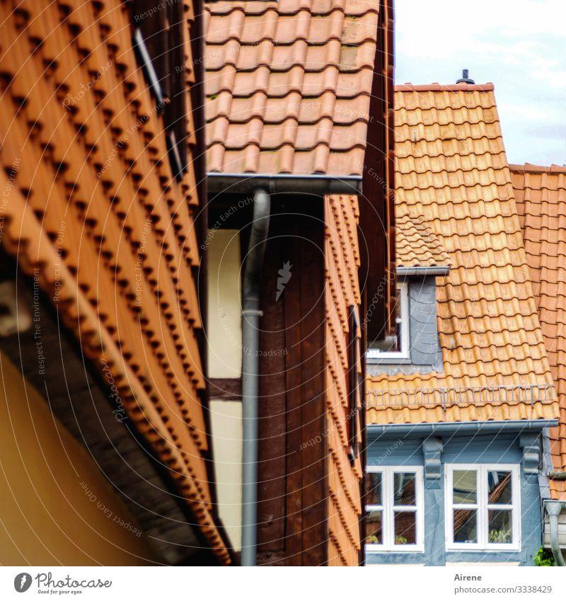 mustergültig renoviert Altstadt historisch Ziegeldach Dachziegel Tradition Stadtzentrum Sprossenfenster Fenster Altbau alt Vergangenheit schön Fassade