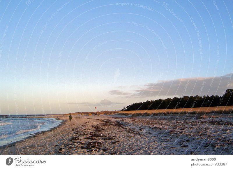Wintertag an der Ostsee Wald Strand Einsamkeit Meer Himmel Klarheit Abend Sand