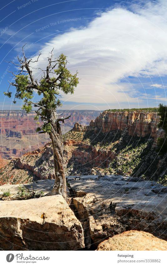 Grand Canyon schön Tourismus Ausflug Abenteuer Sommer Sonne Natur Landschaft Sand Luft Wolken Wetter Felsen Schlucht Wüste Sehenswürdigkeit Wahrzeichen Stein