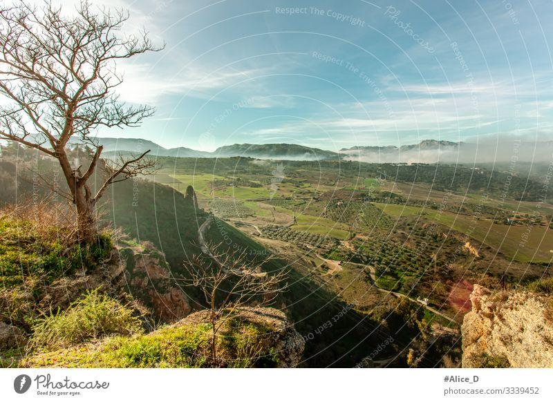 Ronda Tal Landschaft Ferien & Urlaub & Reisen wandern Umwelt Natur Pflanze Nebel Baum Wiese Feld Hügel Felsen Berge u. Gebirge Schlucht Spanien Europa