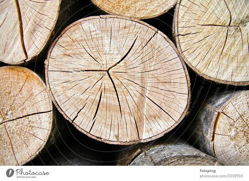Brennholz Winter Wärme Wald Holz nachhaltig rund Biomasse Brennmaterial Brennstoff Buche Energie Heizung Hintergrundbild Holzstapel Jahresringe Ofenholz