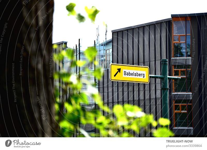 Geschriebenes | Für Autofahrer. Zur Filmstadt Babelsberg Pflanze Baum Haus Blatt Freude Fenster Straße Architektur gelb Wand Tourismus Mauer Häusliches Leben
