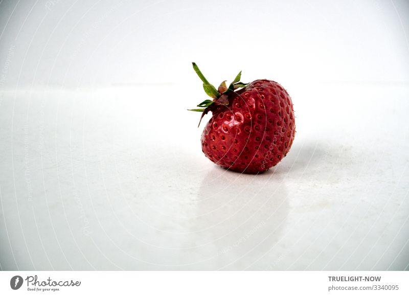 """""""Ich bin so wild nach deinem Erdbeermund..."""" (F.Villon) Lebensmittel Frucht Erdbeeren Ernährung Bioprodukte Vegetarische Ernährung Diät Fasten Fröhlichkeit"""