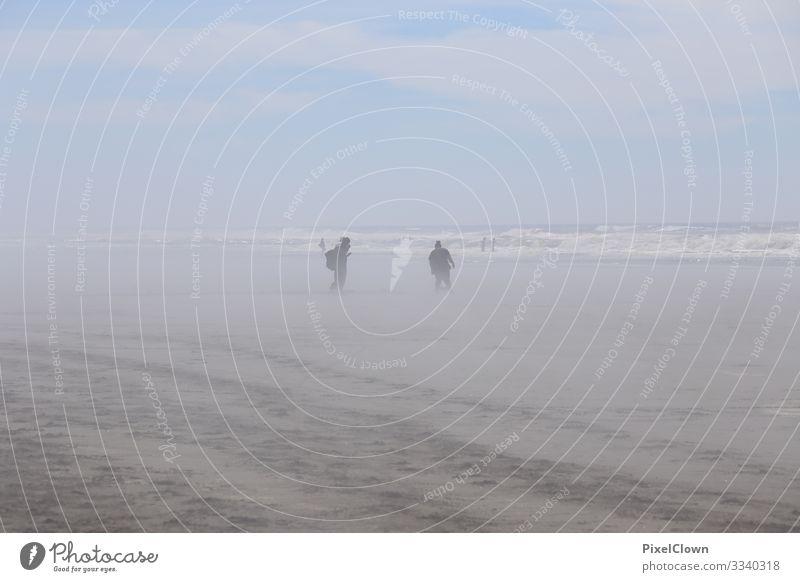 Walking at the beach Lifestyle Freude Ferien & Urlaub & Reisen Tourismus Ausflug Abenteuer Sommerurlaub Strand Meer Mensch Mann Erwachsene Körper 2 45-60 Jahre