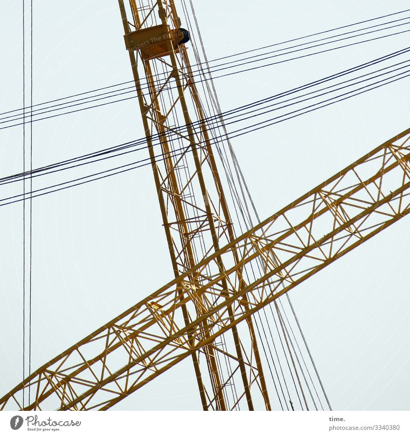 Stadtgiraffen (10) Arbeit & Erwerbstätigkeit Arbeitsplatz Baustelle Handwerk Himmel Kran Metall Linie Zusammensein Wachsamkeit Leben Ausdauer standhaft