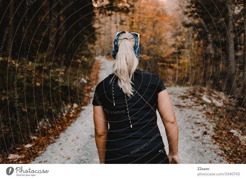 Aufstieg zum Berg brecherspitze wandern wirtschaftweg aufstieg wald herbst gehen rückenansicht junge frau blond zopf sportlich laub T-Shirt Schönes Wetter