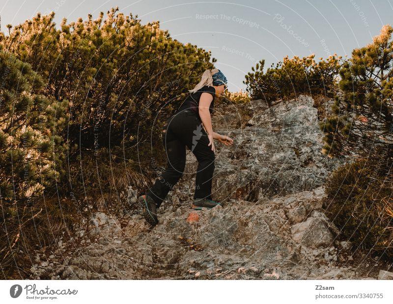 Wandern auf dem Brecherspitz | Bayern Brecherspitze wandern Berge u. Gebirge Alpen Gipfel Wald Panorama gehen sportlich Sport warm Herbst grün braun Frau