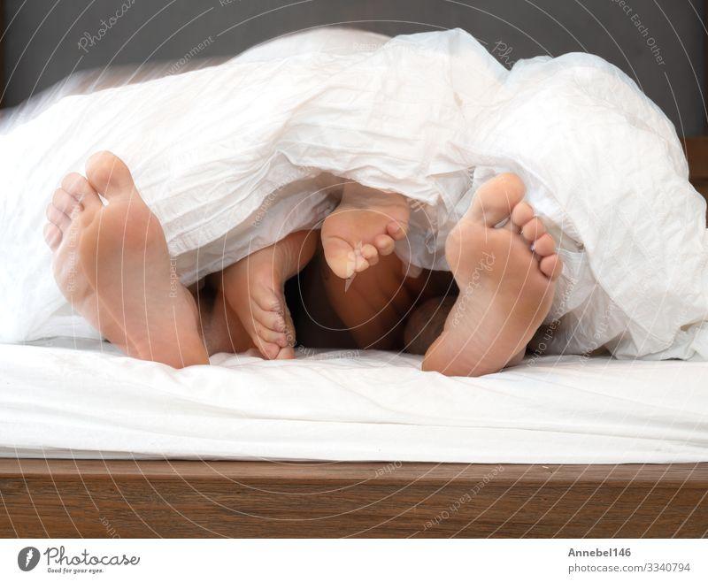 die Füße eines Paares unter der weißen Bettdecke im Bett dicht zusammenrücken, Körper Erholung Freizeit & Hobby Schlafzimmer Mensch Frau Erwachsene