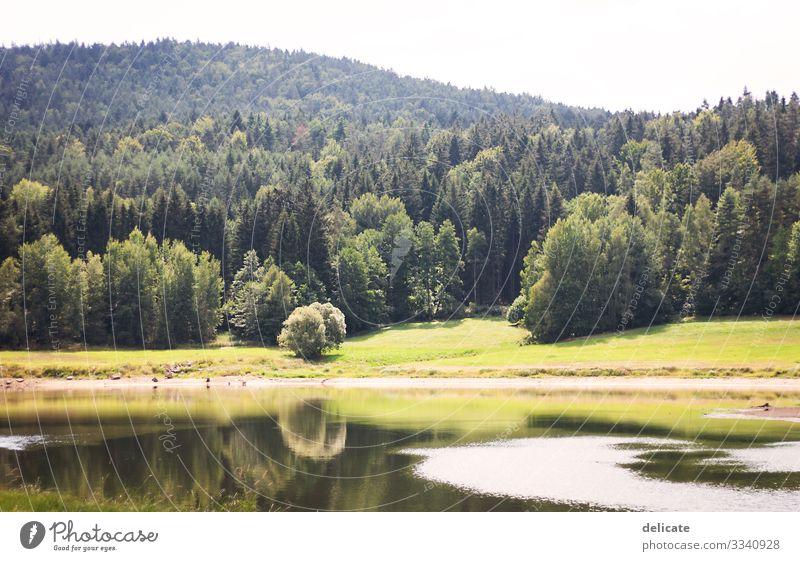 Idylle Außenaufnahme Farbfoto Landschaft Wanderschuhe Wandertag Wanderurlaub Klettern wandern Bergsteigen Sommerurlaub Berge u. Gebirge Expedition Freiheit
