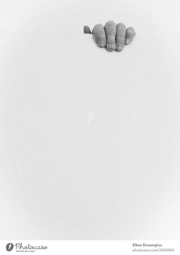 Hand entdecken ästhetisch authentisch außergewöhnlich natürlich geduldig standhaft minimalistisch Schwarzweißfoto Innenaufnahme Tag Starke Tiefenschärfe