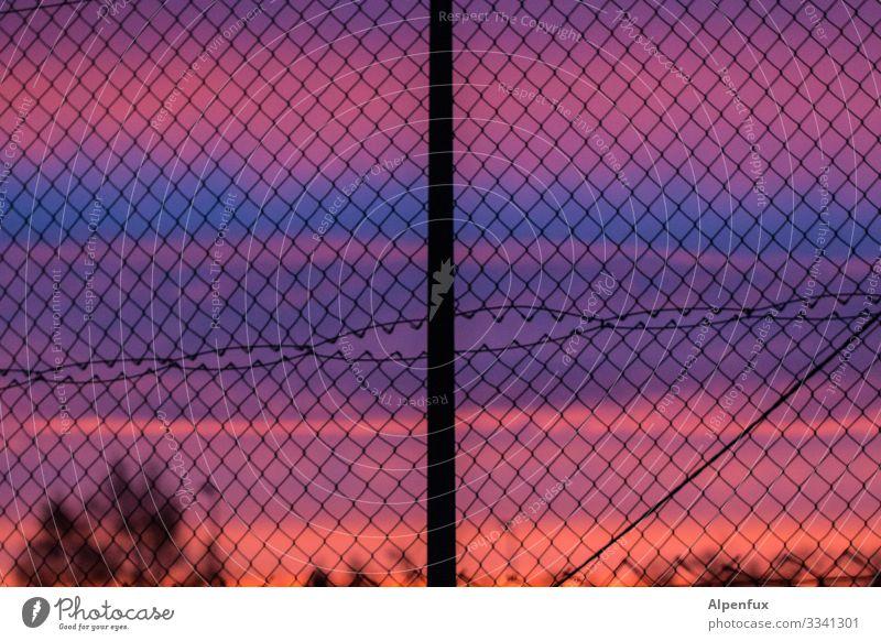 Morgenlatte Zaun Sonnenaufgang Sonnenaufgang - Morgendämmerung Himmel Menschenleer Absperrung Wolken Außenaufnahme Dämmerung Sonnenuntergang Farbfoto Silhouette