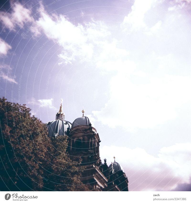 versteckt Himmel Schönes Wetter Pflanze Baum Berlin Stadt Hauptstadt Stadtzentrum Altstadt Kirche Dom Turm Bauwerk Sehenswürdigkeit Wahrzeichen