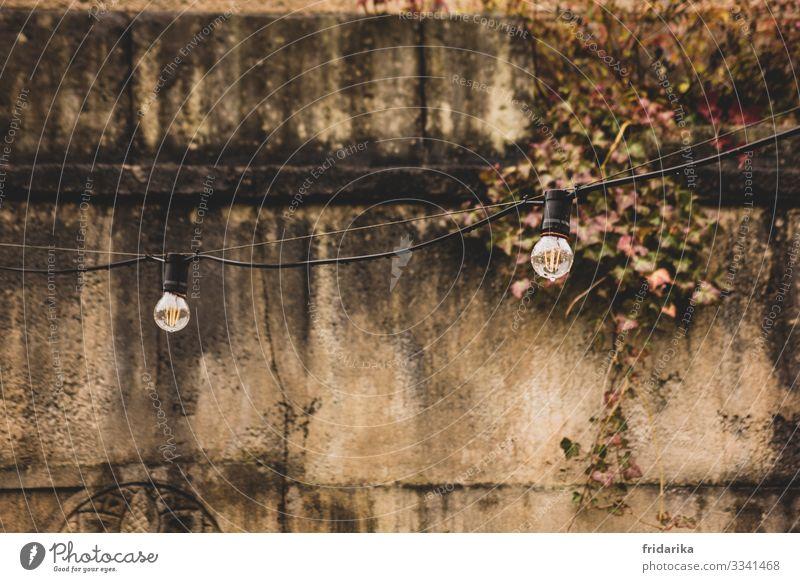 Lights on Tourismus Ausflug Feste & Feiern Ruine Mauer Wand Fassade Stein Ornament dreckig braun Efeu Licht Lichterkette Farbfoto Außenaufnahme Menschenleer