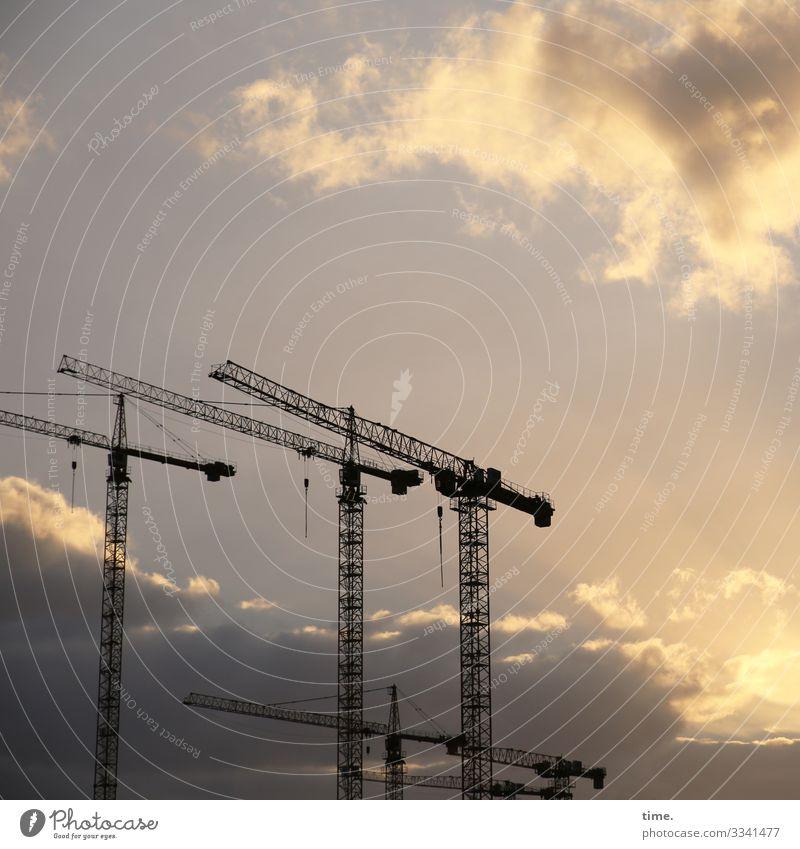 Stadtgiraffen (6) Arbeit & Erwerbstätigkeit Arbeitsplatz Baustelle Güterverkehr & Logistik Himmel Wolken Schönes Wetter Hamburg Kran stehen dunkel Zusammensein