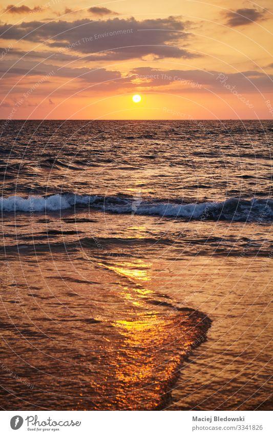 Goldener Sonnenuntergang über dem Meer. Ferien & Urlaub & Reisen Tourismus Ausflug Ferne Freiheit Kreuzfahrt Sommer Sommerurlaub Strand Insel Wellen Natur