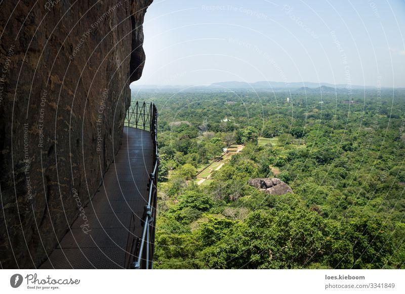 Iron railing path along the lions rock, Sri Lanka Ferien & Urlaub & Reisen Tourismus Abenteuer Ferne Sightseeing Sommer Sonne Natur Pflanze Urwald Hügel Felsen