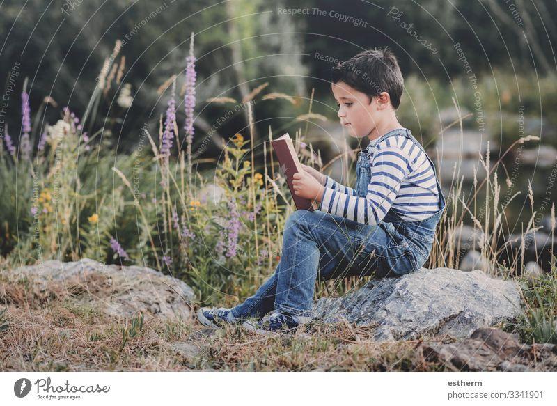 Kind sitzt und liest ein Buch auf dem Feld Lifestyle Freizeit & Hobby lesen Sommer lernen Mensch maskulin Junge Kindheit 1 8-13 Jahre Natur Wald entdecken