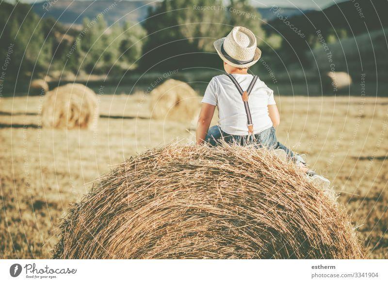Rückenansicht eines nachdenklichen Kindes auf dem Strohfeld Lifestyle Ferien & Urlaub & Reisen Sommer Mensch maskulin Kindheit 1 8-13 Jahre Natur Landschaft