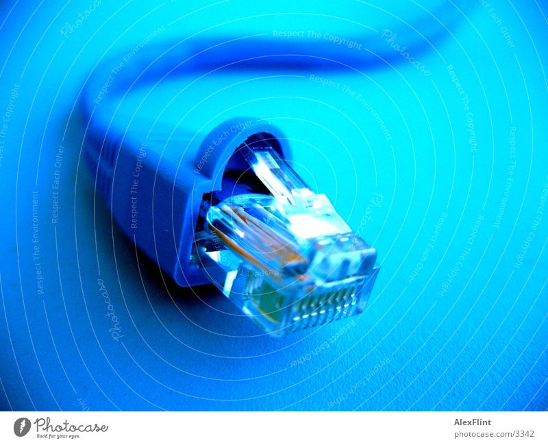 cable2 Netzwerkkabel Makroaufnahme Nahaufnahme Kabel blau
