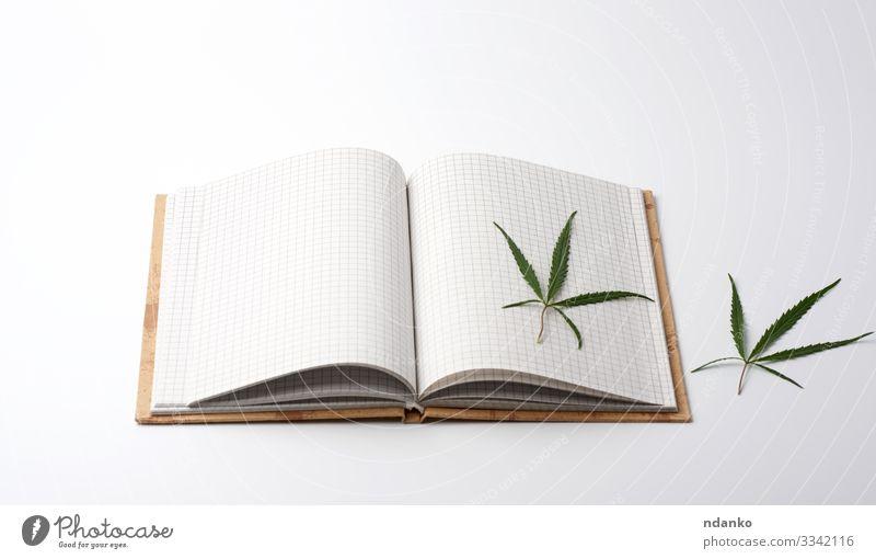 leere weiße Blätter und grünes Hanfblatt Kräuter & Gewürze Medikament Kultur Pflanze Gras Blatt Papier Habitus Hash Haschisch Kräuterbuch ungesetzlich