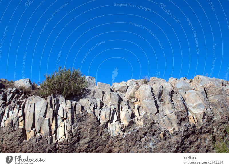 Madeira   Pico do Arieiro Portugal Felsen Felsformation Gesteinsformation Gebüsch Froschperspektive kahl karg einsam Tourismus Ferien Urlaub Reisen Wandern