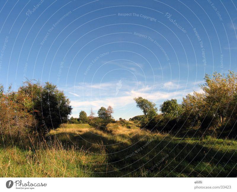 Landschaft mit Herbstsonne blau Hügel Schönes Wetter