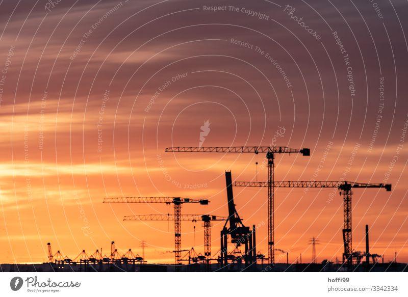 Kräne mit Sonnenuntergang Himmel Sonnenaufgang Schönes Wetter Hafenstadt Baukran Containerterminal verladen bauen Baustelle Arbeit & Erwerbstätigkeit gigantisch
