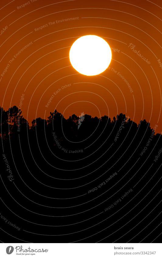 Sonnenuntergang schön Ferien & Urlaub & Reisen Freiheit Sommer Berge u. Gebirge Umwelt Natur Landschaft Himmel Wolken Horizont Sonnenaufgang Sonnenlicht Klima