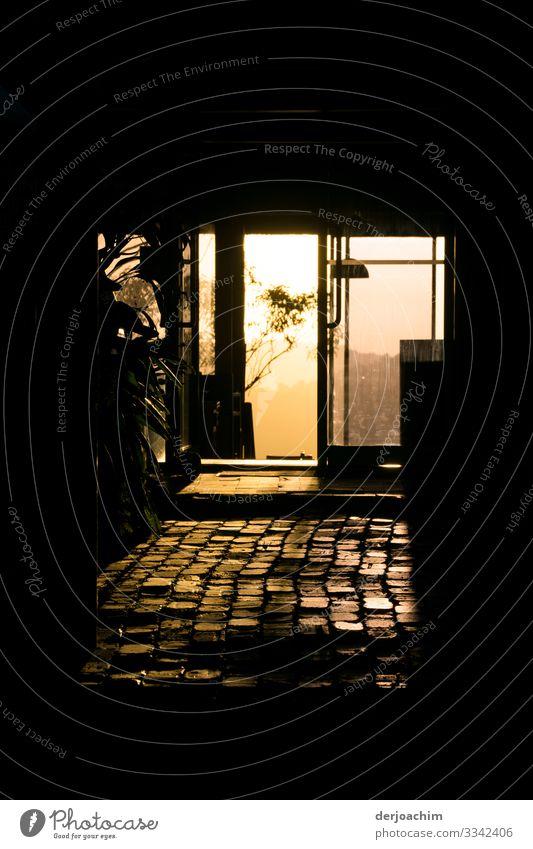 Abendstimmung in Binna Barra Natur Sommer schön Erholung Fenster gelb Gefühle Stil Gebäude außergewöhnlich Stein Ausflug Idylle genießen Sträucher