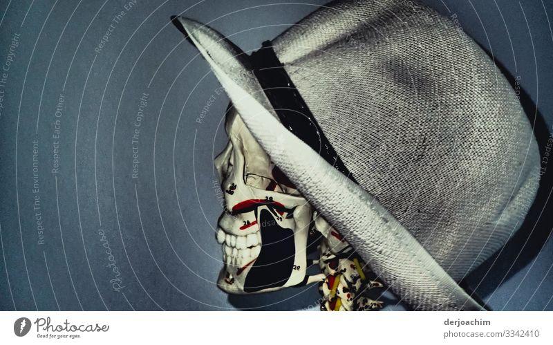 Potrait mit Hut. Ein Skelett mit Hut von der Seite zum Betrachter. Die Zähne sind gut zu sehen. Freude Wohlgefühl androgyn Kopf 1 Mensch Schönes Wetter Raum
