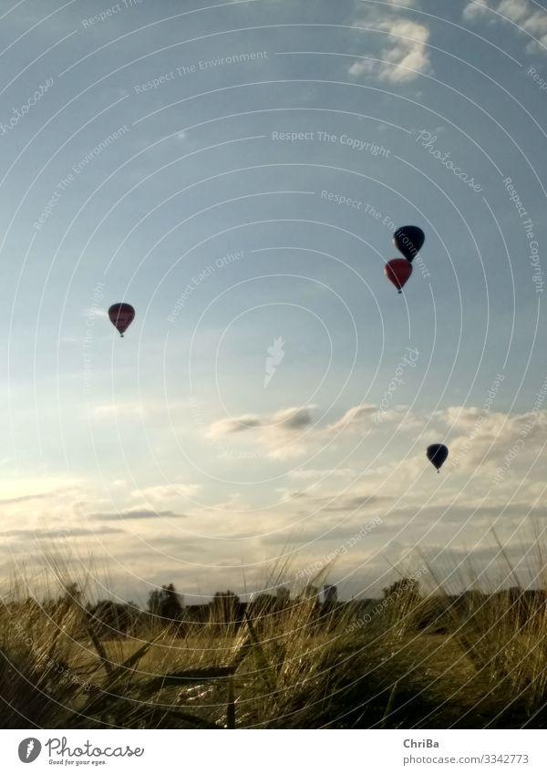 Sommerabend, Ballons über Neu-Ulm Lifestyle Freizeit & Hobby Sport Ballone Feierabend Erneuerbare Energie Luftverkehr Fluggerät Ballonstart Ballonfahrt Umwelt