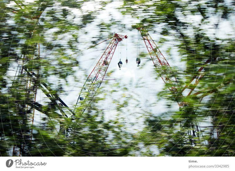 Stadtgiraffen (8) Arbeit & Erwerbstätigkeit Arbeitsplatz Baustelle Schönes Wetter Pflanze Baum Kran fahren Geschwindigkeit Bewegung entdecken Inspiration