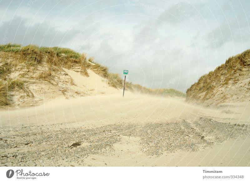 Sandwind. Natur Landschaft Strand Umwelt Gefühle Wege & Pfade Stein Sand natürlich gehen Schilder & Markierungen Nordsee Düne Dänemark Übergang Dünengras