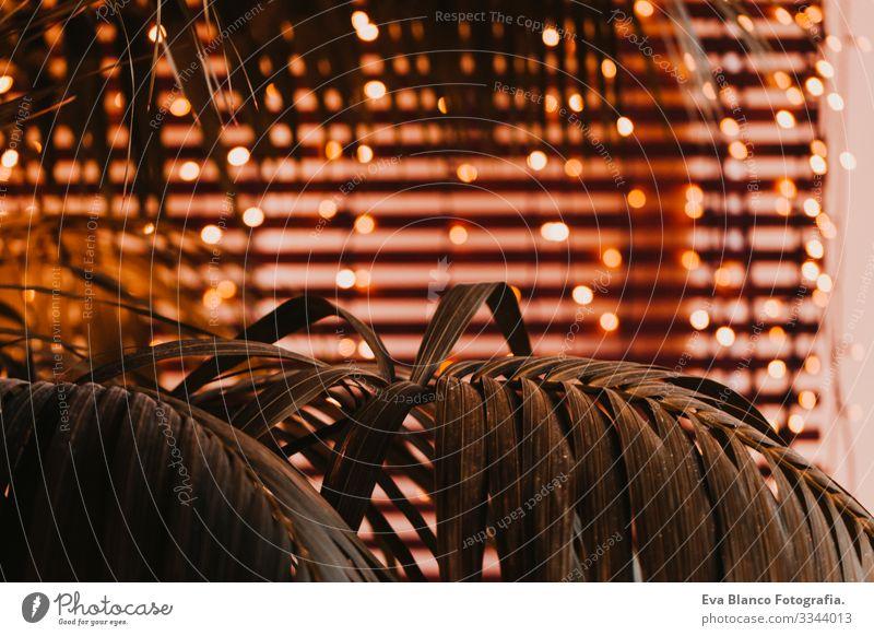 Gelb leuchtet den Hintergrund aus. Grün lässt den Fokus stehen. Konzept der Innendekoration Lichtschein aufblinken Unschärfe Nachtleben Kreis Großstadt abstrakt