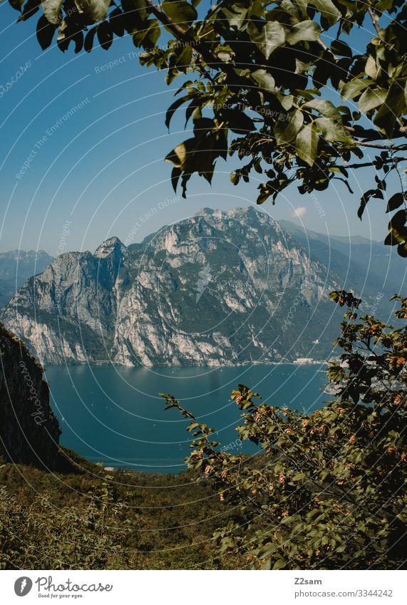 Gardasee gardasee Italien See Wasser Berge u. Gebirge mediteran Himmel Seeufer Farbfoto Außenaufnahme Natur Ferien & Urlaub & Reisen gebüsch landschaft