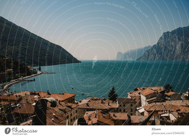 Torbole, Gardasee alpenüberquerung gardasee torbole ausblick stadt dorf ferienort surfer hausdächer wohnen urlaub norden wasser sommer blauer himmel berge