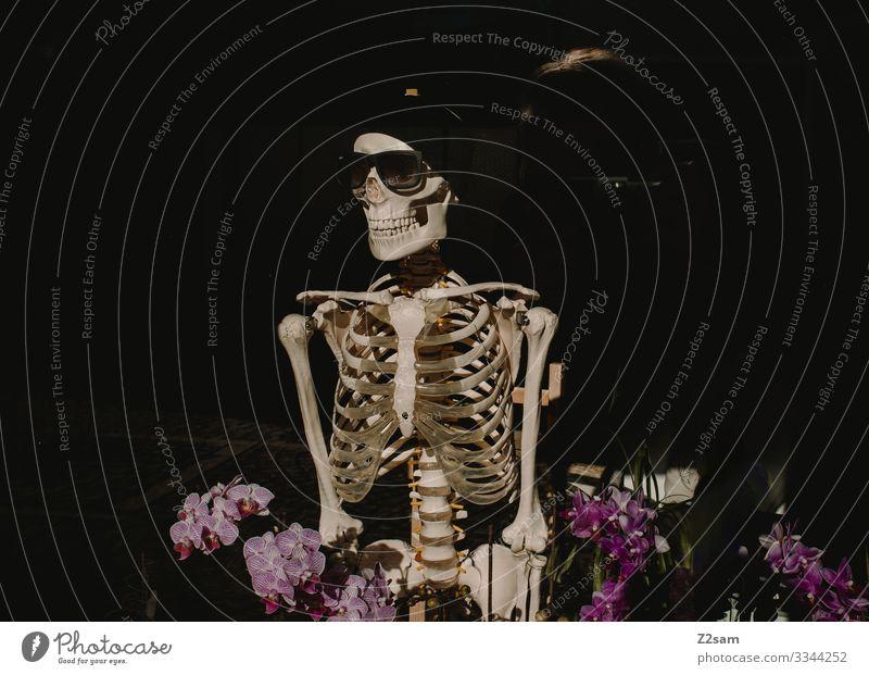 Der Tot im Blumenfeld Körper 1 Mensch Mode Sonnenbrille Mütze Lächeln stehen gruselig Senior Surrealismus Mountainbike Skelett Schädel Tod Medikament Knochen