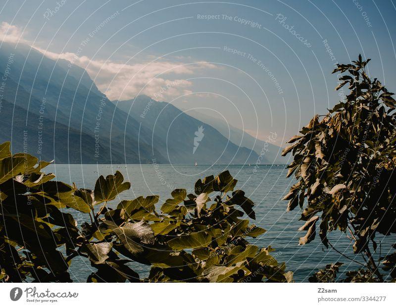Gardasee von Riva aus gardasee Riva del Garda büsche bergsee alpen himmel blau Berge u. Gebirge wolken dunst sommer sonne wasser gewässer italien norditalien