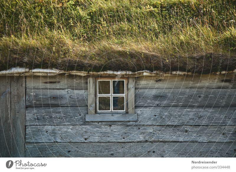 Echtheit Natur Sommer ruhig Haus Fenster Wiese Leben Architektur Holz natürlich Fassade Häusliches Leben Freundlichkeit Hütte Wohlgefühl harmonisch
