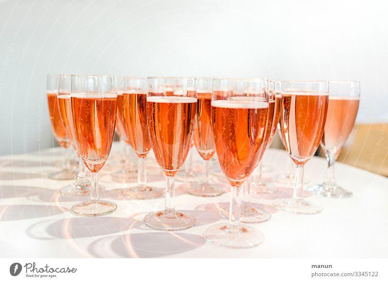 Prösterchen! Getränk Erfrischungsgetränk Alkohol Sekt Prosecco Champagner Longdrink Cocktail Sektglas Lifestyle Freude Gesundheit Krankheit Party Veranstaltung