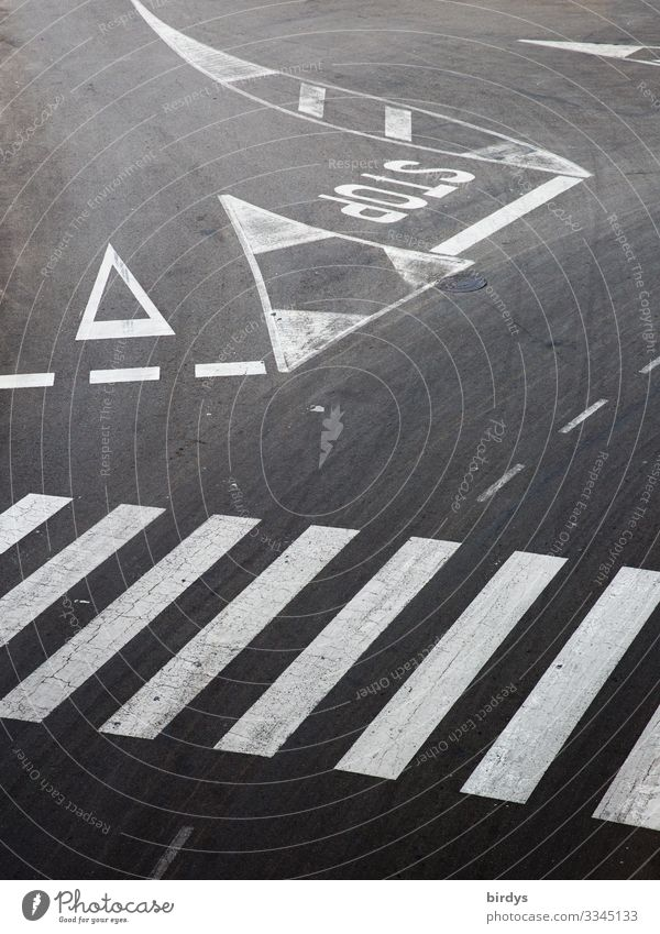 Regelwerk Verkehr Verkehrswege Straßenverkehr Straßenkreuzung Wege & Pfade Verkehrszeichen Verkehrsschild Zebrastreifen Zeichen Schriftzeichen