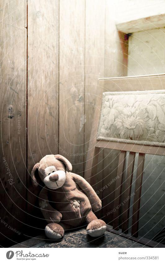 Kleiner Seufzer Hund alt Einsamkeit Tier Traurigkeit Holz klein braun Wohnung Freizeit & Hobby Kindheit sitzen Häusliches Leben niedlich Kindheitserinnerung
