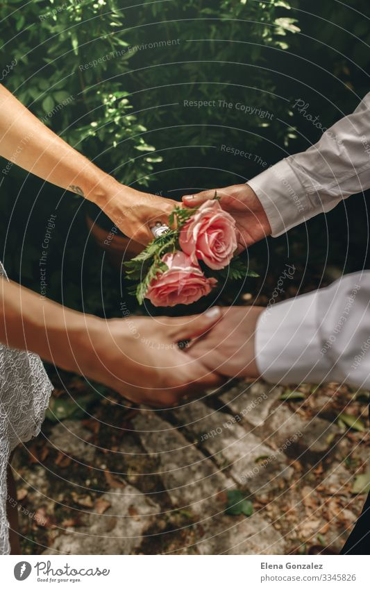 Neuvermählte mit verschränkten Händen. Selektiver Fokus auf den Strauß Hochzeit Frau Erwachsene Hand Finger Rose Blumenstrauß Liebe Zusammensein rosa Gefühle