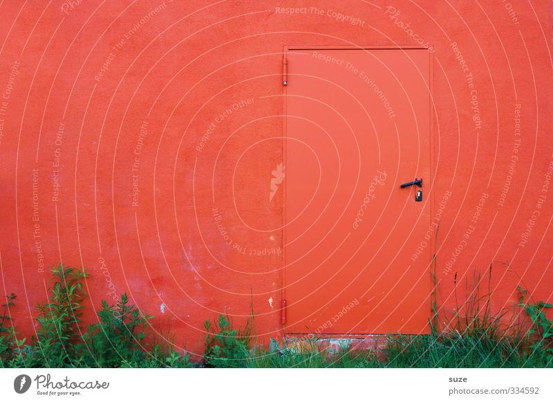 Hell's kitchen Farbe rot Wand Erotik Gras lustig Mauer außergewöhnlich Tür geschlossen verrückt einfach Symbole & Metaphern Neugier geheimnisvoll heiß