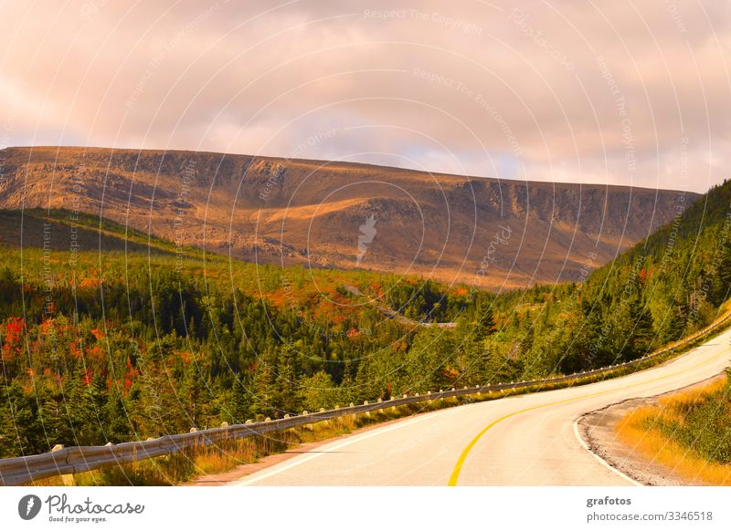 Road To Newfoundland Stil Ferien & Urlaub & Reisen Tourismus Ausflug Abenteuer Ferne Freiheit Berge u. Gebirge wandern Natur Landschaft Erde Wolken Herbst Wald