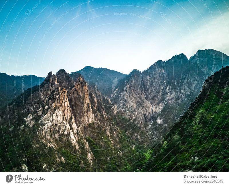 Aussicht auf Berge bei schönem Wetter Berge u. Gebirge Natur Landschaft Hintergrundbild Wald Tourismus Erholung Ferien & Urlaub & Reisen Menschenleer