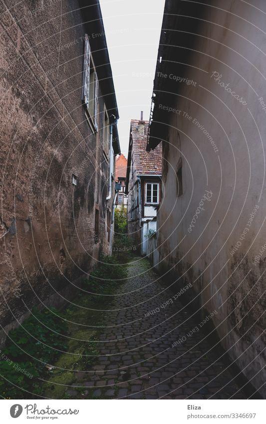 Gasse Dorf Menschenleer Wege & Pfade Kopfsteinpflaster Fachwerkhaus alt dunkel schmal eng Einsamkeit gehen trist Moos Fassade Mauer ranzig dreckig kaputt