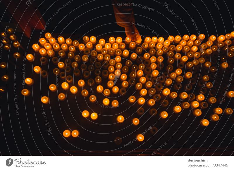Wie ein Lichtermeer sehen die angezündeten Kerzen aus. Von Oben Aufgenommen. feminin Familie & Verwandtschaft Hand 1 Mensch 18-30 Jahre Jugendliche Erwachsene