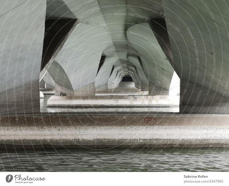 Unter der Brücke in Singapur am Merlion Singapore Hauptstadt Bauwerk Architektur Sehenswürdigkeit Wahrzeichen Stein Beton Wasser authentisch modern weiß Fluss